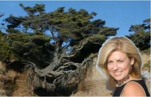 Jennifer Sertl Resilience